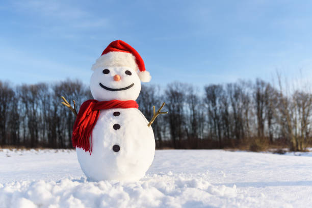 Funny snowman in red hat Funny snowman in Santa hat and red scalf on snowy field. Merry Christmass and happy New Year! snowman stock pictures, royalty-free photos & images
