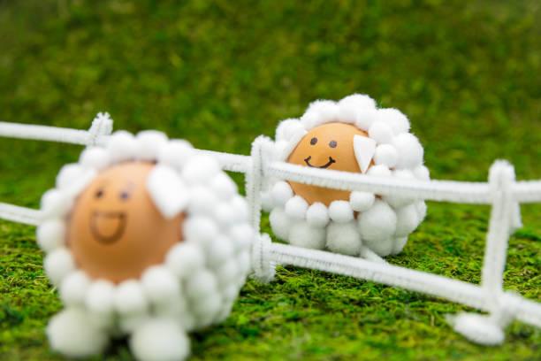 lustige frühlings-oder osterlandschaft auf grüner wiese, zwei lammfiguren eier auf einem zaun - schafkopfkarten stock-fotos und bilder