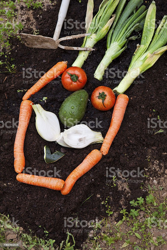 funny vegetables royalty-free stock photo