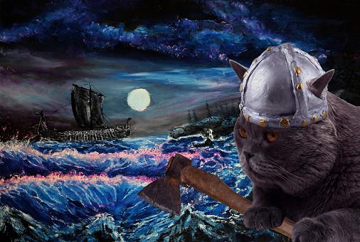 Funny viking cat