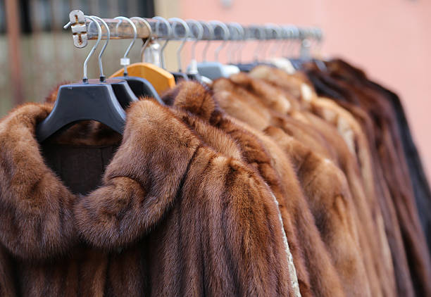 fur coat very sofly in vintage style Luxury fur coat very sofly in vintage style fur stock pictures, royalty-free photos & images