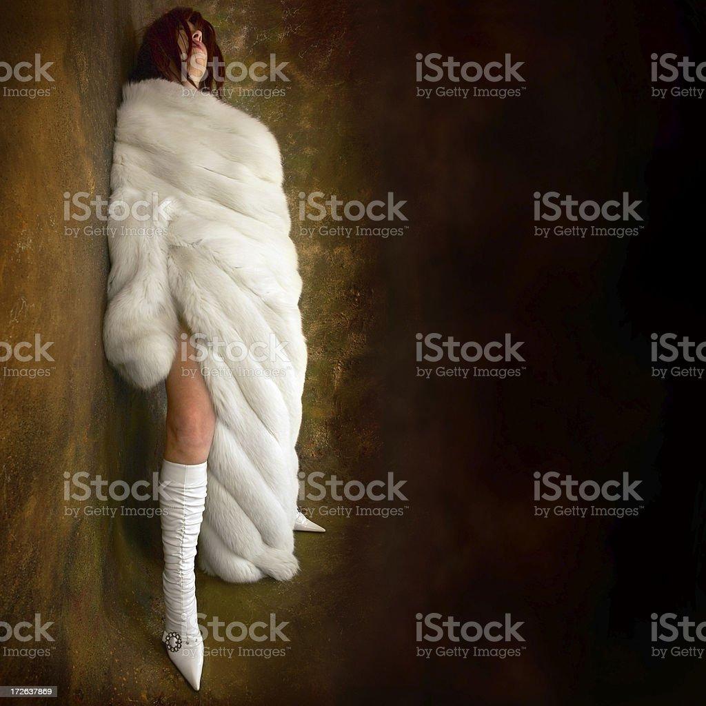 Fur in the dark royalty-free stock photo