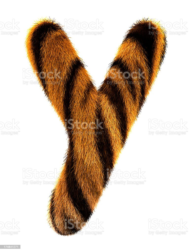 Fur letter Y stock photo