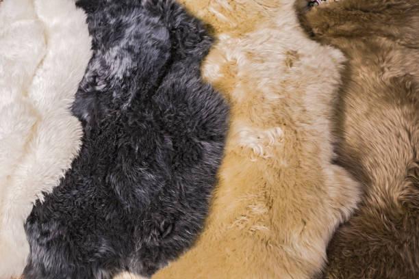 fell-skins für schaffell für interior design, weiß, schwarz, beige, braune haut texturen felle - lammfell stock-fotos und bilder