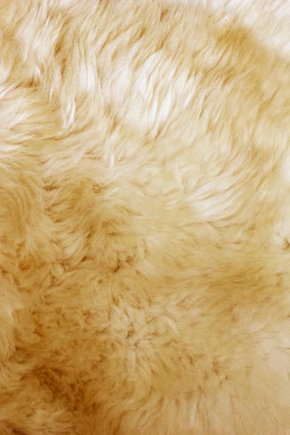 pelzer-textur - lammfell stock-fotos und bilder