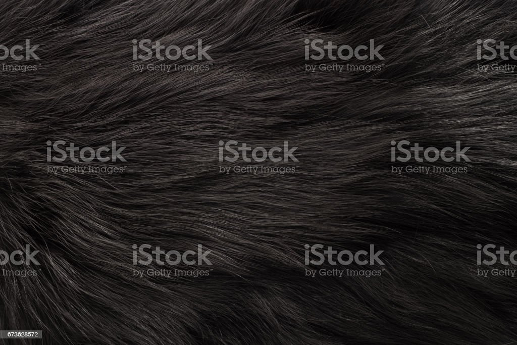 Fur texture royalty-free stock photo