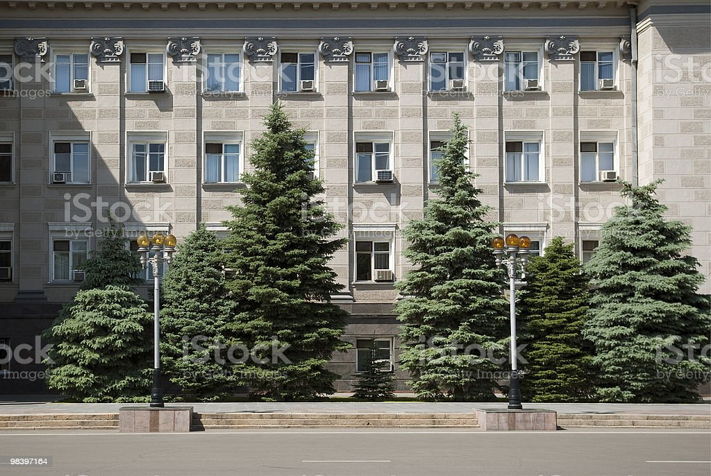 Fur-trees before a building facade. royalty-free stock photo