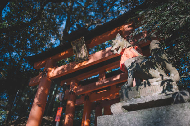 Fushimi Inari in Kyoto, Japan Fushimi Inari in Kyoto, Japan torii gate stock pictures, royalty-free photos & images