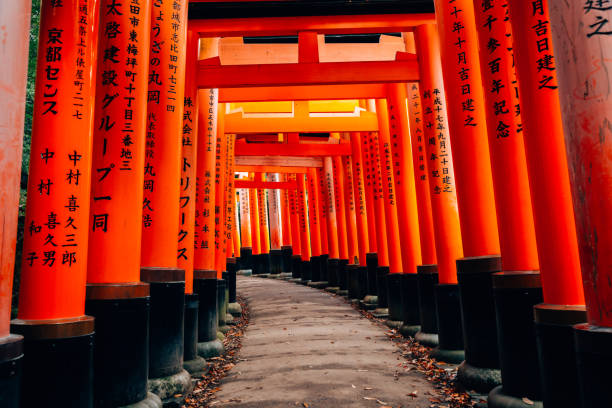 Kyoto, Japan - December 1, 2016 : Fushimi Inari Shrine Torii gate Kyoto, Japan - December 1, 2016 : Fushimi Inari Shrine Torii gate shinto stock pictures, royalty-free photos & images