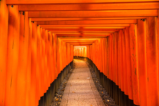 伏見いなり寿司大社で京都 - 2015年のストックフォトや画像を多数ご用意