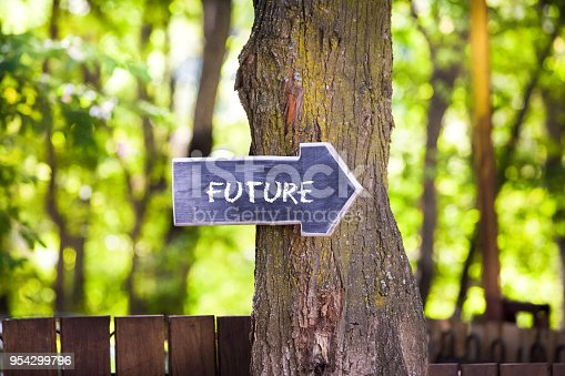 istock Future concept,  wooden sign on tree 954299796