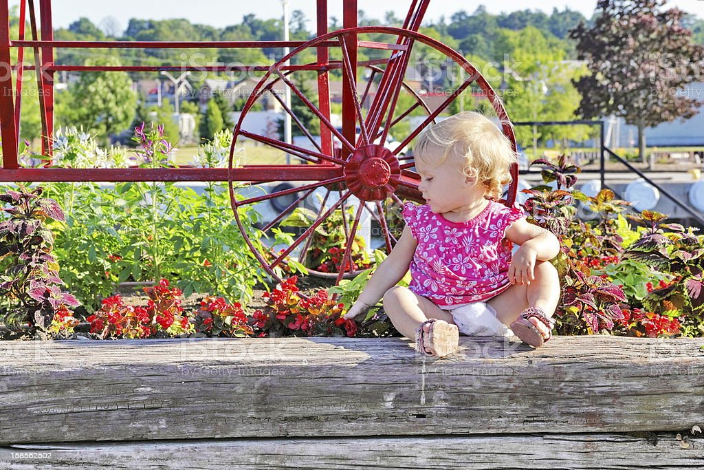 Future Gardener, Baby Playing in Raised Flower Bed royalty-free stock photo