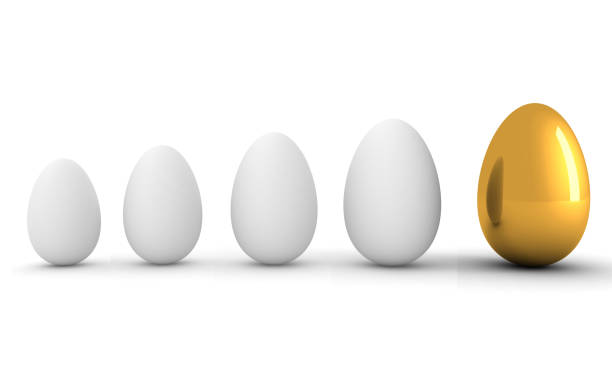 Future savings investment growth change egg gold Future savings investment growth change egg gold nest egg stock pictures, royalty-free photos & images