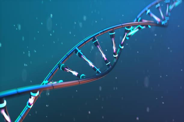 futuristic image of dna. scientific research. - ricerca scientifica foto e immagini stock