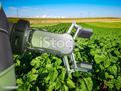 istock Futuristic smart farming with hitech automation robot assistant 1155659939