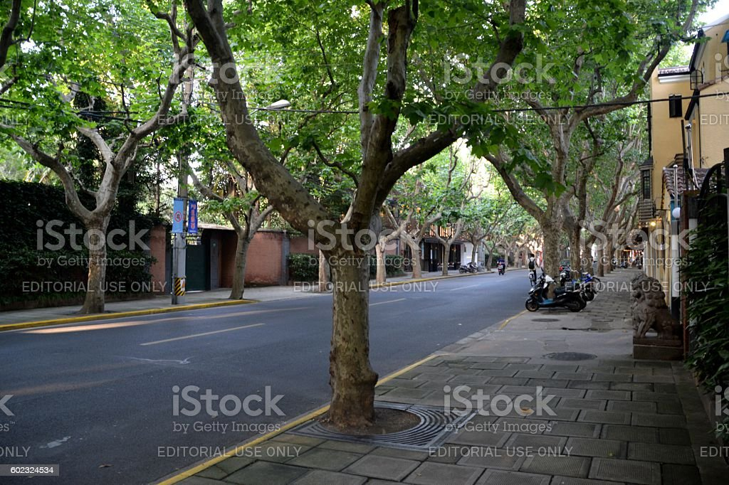 Fuxing Road, old French concession of Shanghai, China stock photo