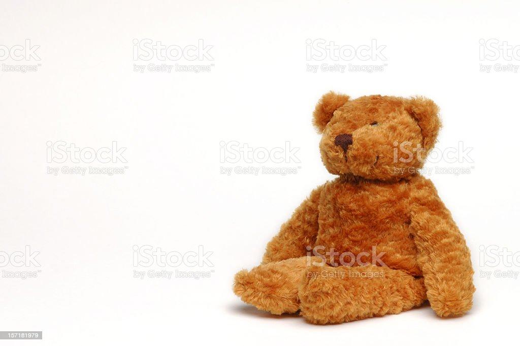 Fuzzy Friend royalty-free stock photo