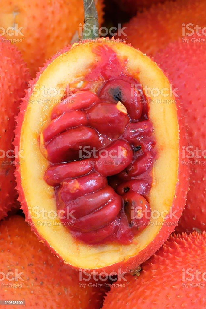 Baby Gac, owoce chlebowca (Jackfruit), Spiny Bitter, dyniowatych zbiór zdjęć royalty-free