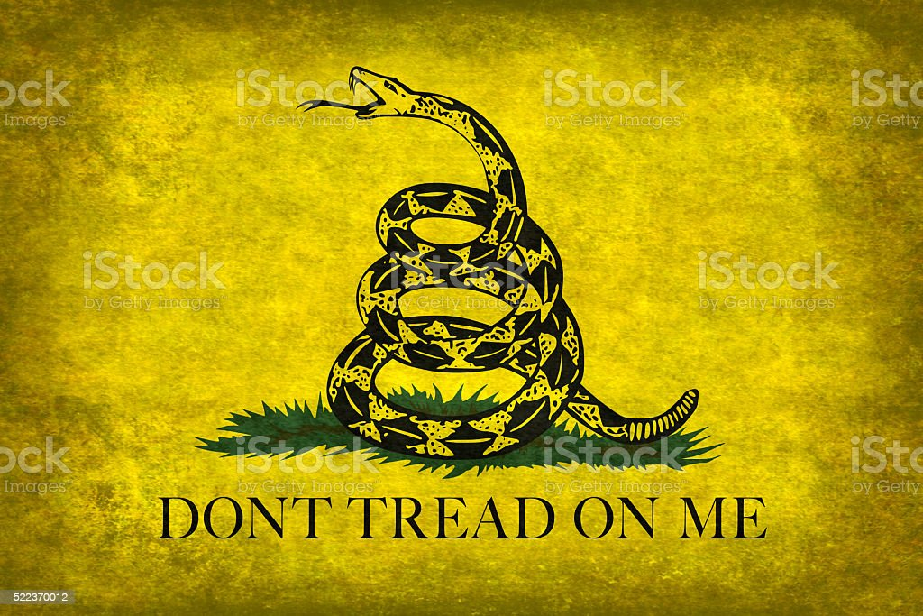 Gadsden Don't Tread On Me Flag, distressed version stock photo