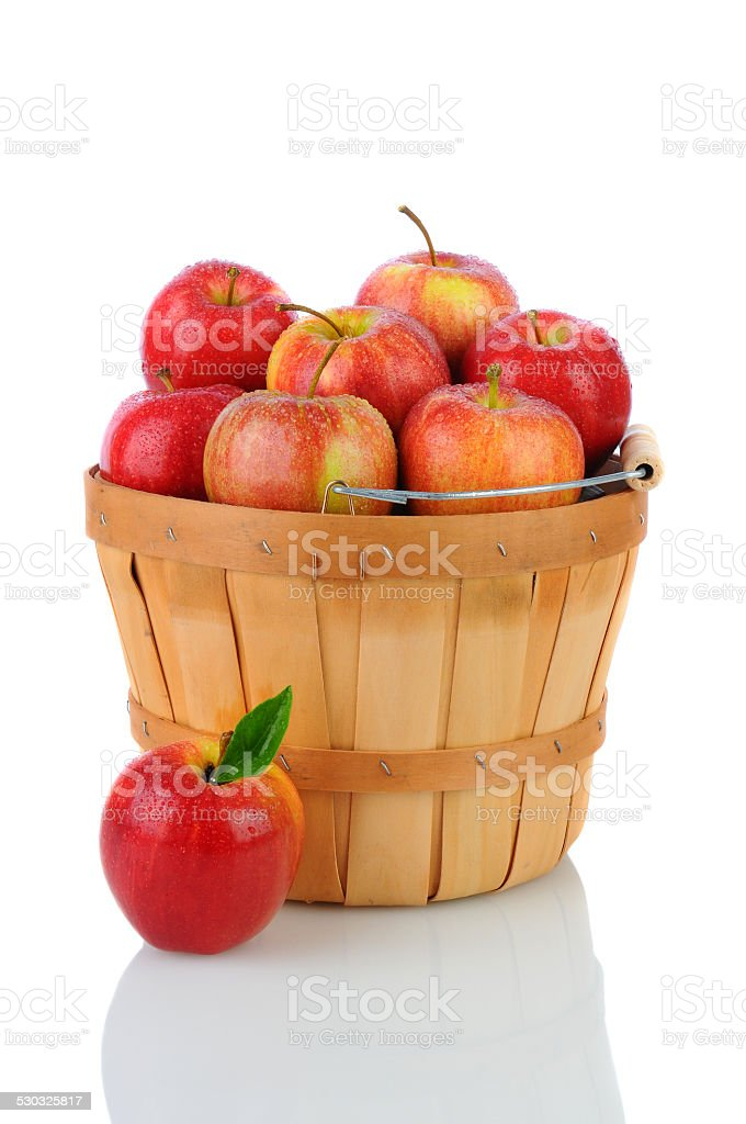 Gala Apples in a Basket stock photo