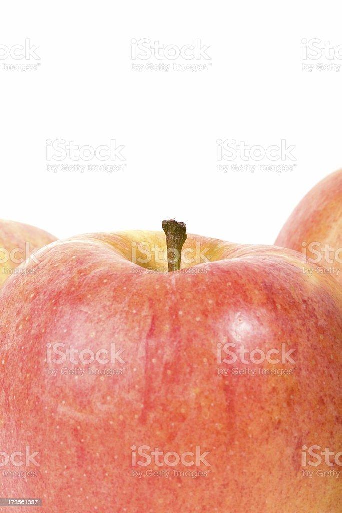 Gala apples royalty-free stock photo