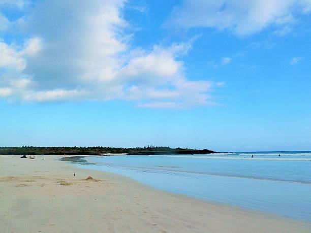 Galapagos Islands Tortuga Bay 02 stock photo