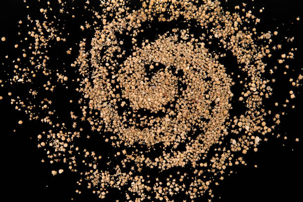 Galaxy of Taketomi beach rare foraminifera star sand stock photo