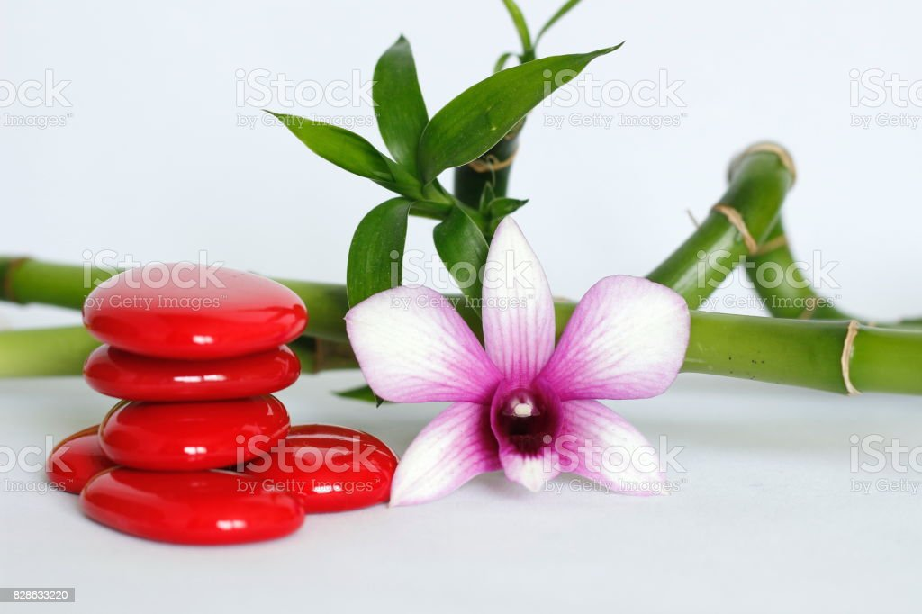 galets disposés en mode de vie zen avec une orchidée bicolore sur le coté droit des bambou torsadé posé derriere le tout sur fond blanc stock photo