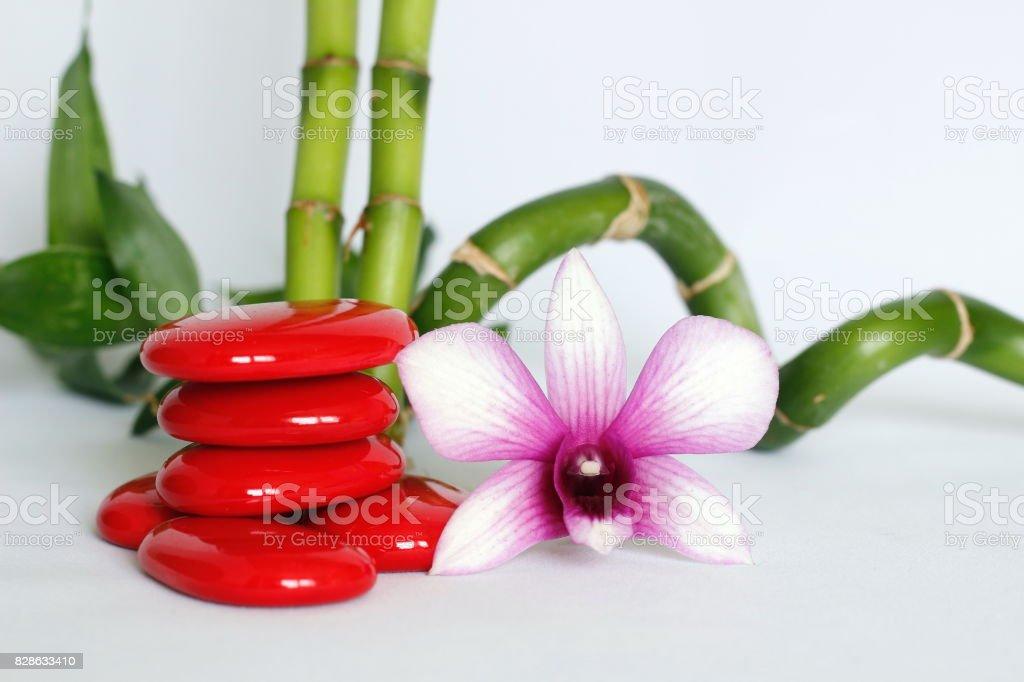 galets en mode de vie zen avec une orchidées bicolore sur le coté droit des bambou droit et torsadé le tout sur fond blanc stock photo