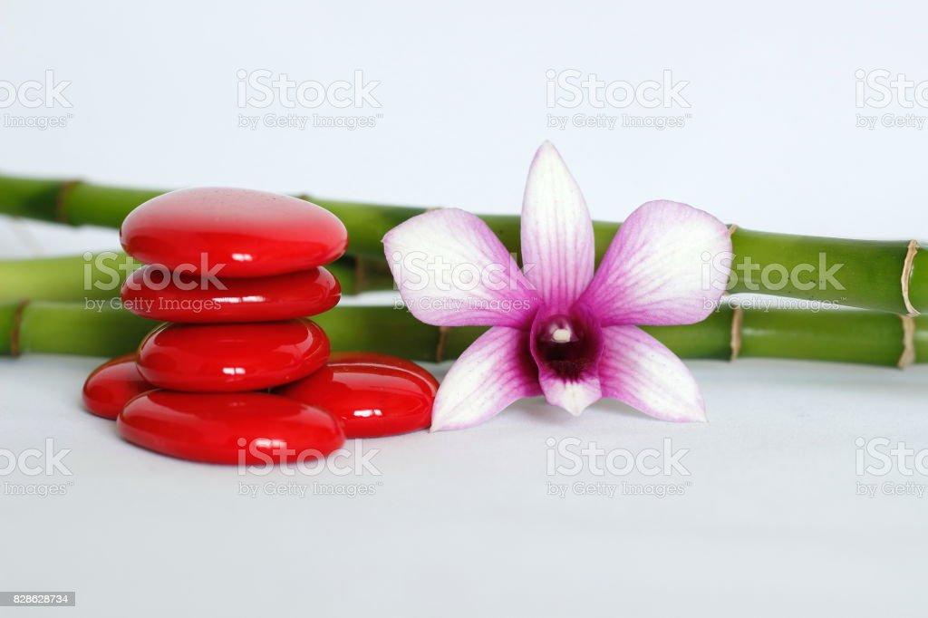 galets rouge disposés en mode de vie zen avec une orchidée bicolore sur le coté droit des bambou posé derriere le tout sur fond blanc stock photo
