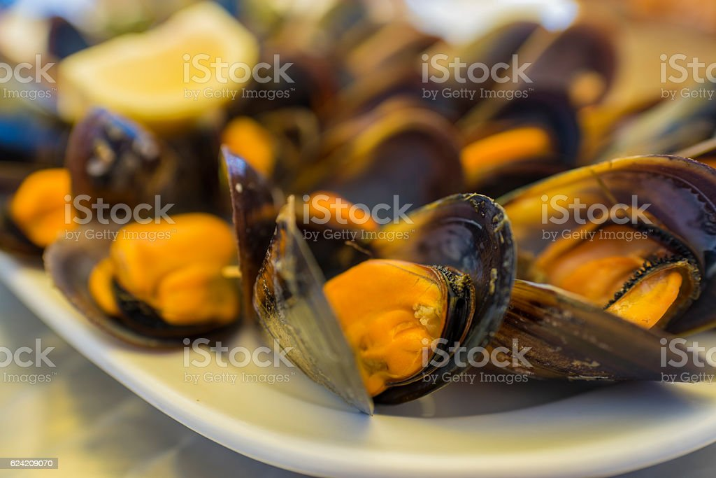 Galician mussels. stock photo