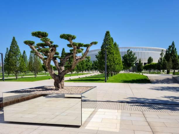 ガリツキーパーク、クラスノダール、ロシア-07.06.2020:ガリツキー公園クラスノダールの木のためのミラー花壇 - クラスノダール市 ストックフォトと画像