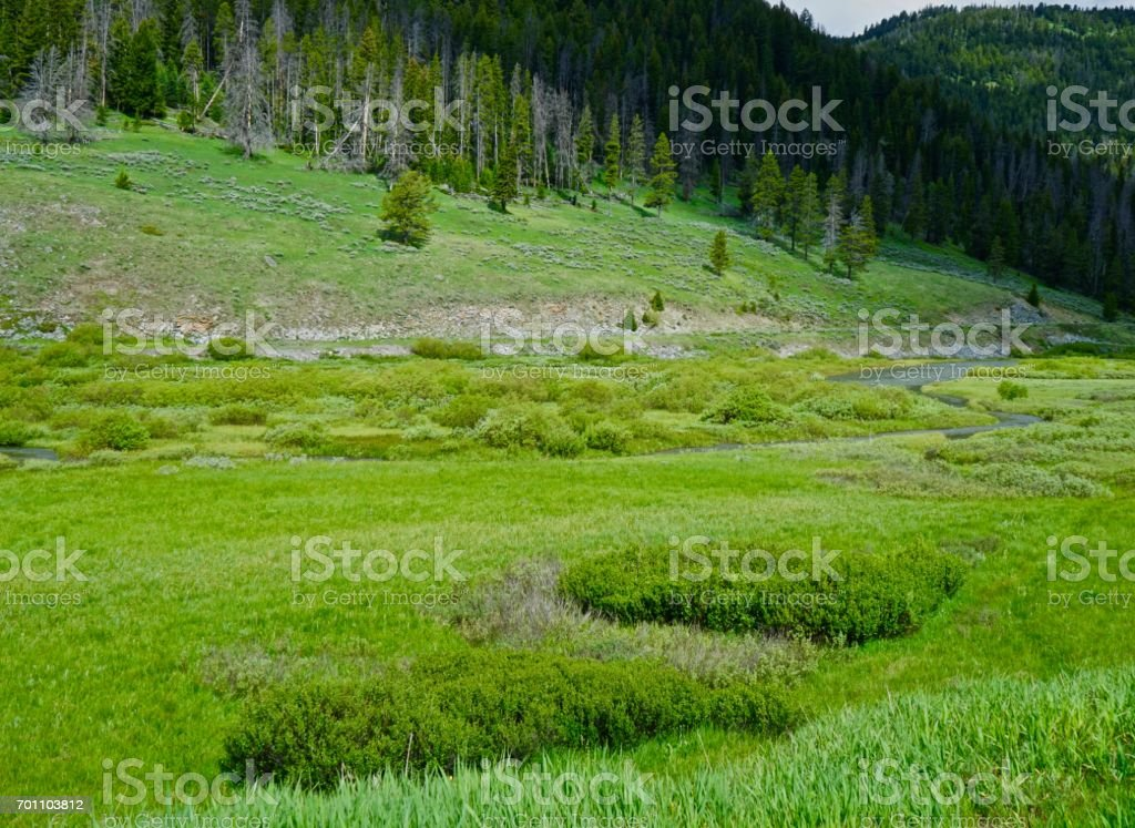 Gallatin River Headwaters stock photo