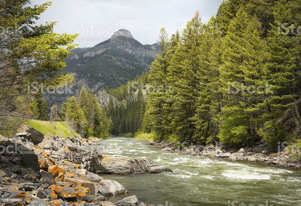 Gallatin River Montana stock photo