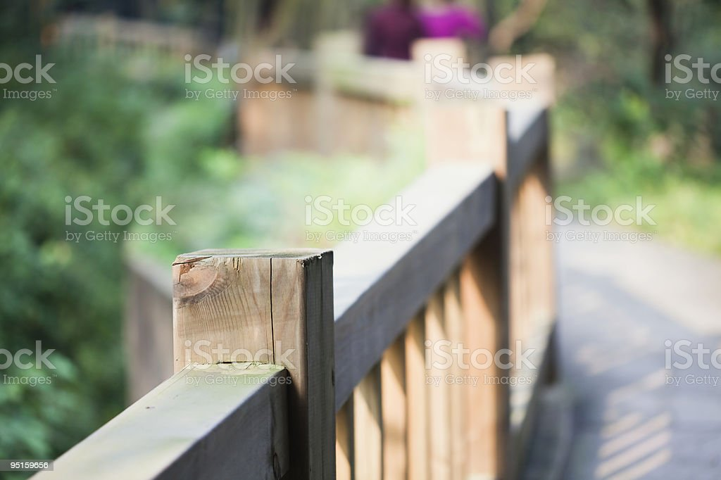 Galleria forest royalty-free stock photo