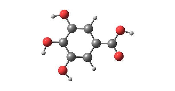 Gallic acid molecular structure isolated on white – zdjęcie