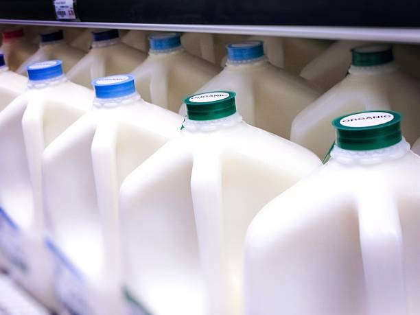Gallon Jugs of Organic Milk at the Supermarket Bottles specifically labeled ORGANIC milk gallon stock pictures, royalty-free photos & images