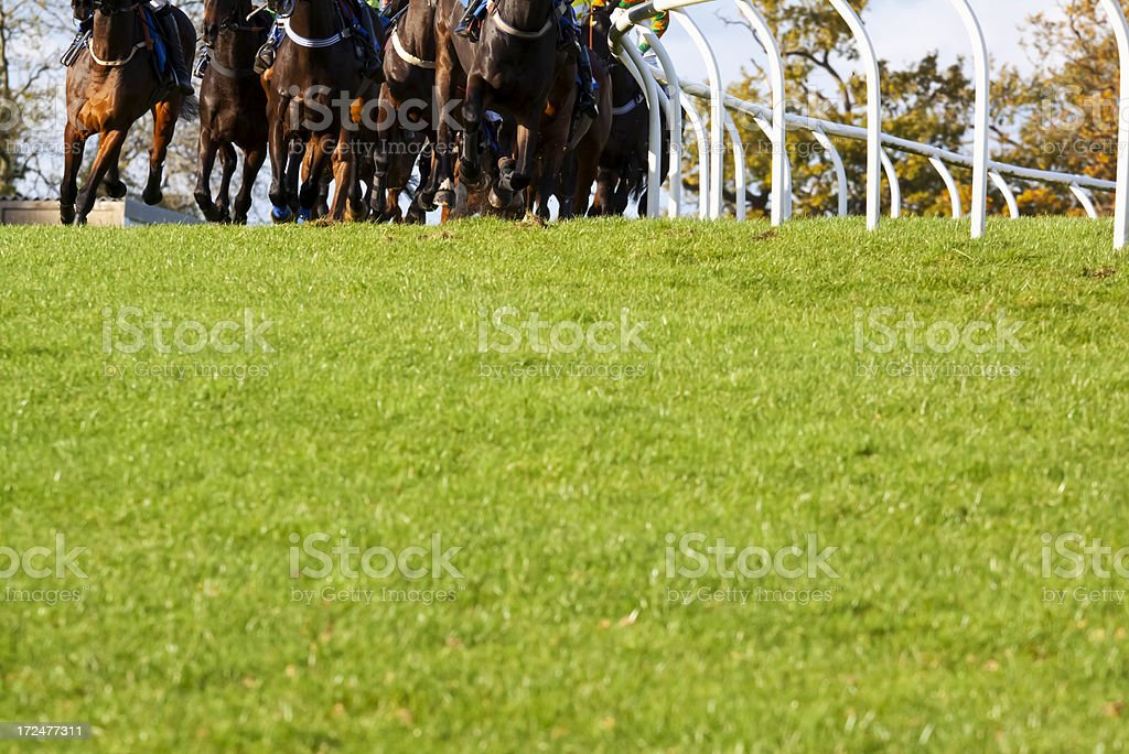 Galloping Racehorses stock photo