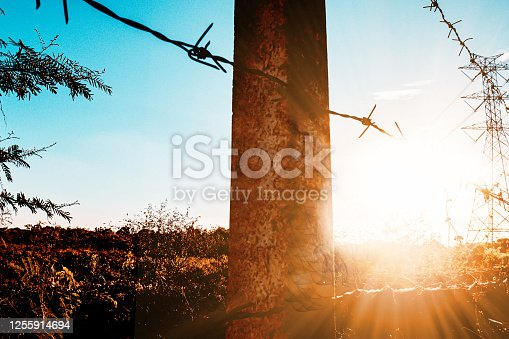 istock Galvanized Barb Wire Fencing. Field Fence at sunrise in morning with electric power on background in rural area 1255914694