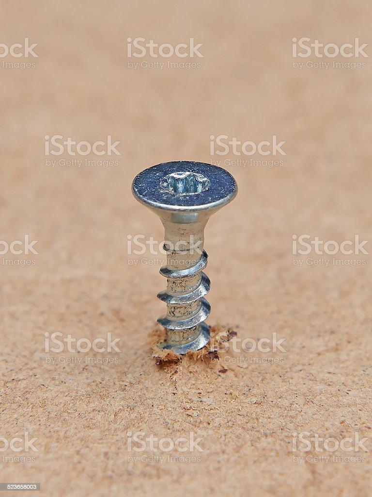 Galvanized screw stock photo