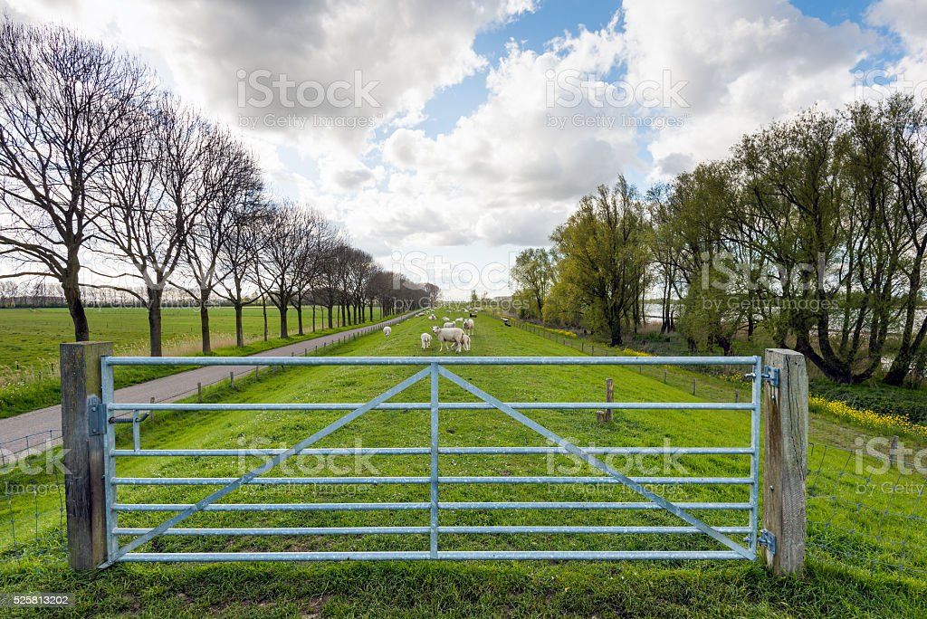 Galvanized steel gate between two wooden posts stock photo
