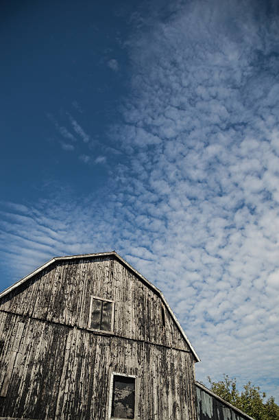 gambrel roof black weathered barn with deep blue sky cloudscape - traumscheune stock-fotos und bilder