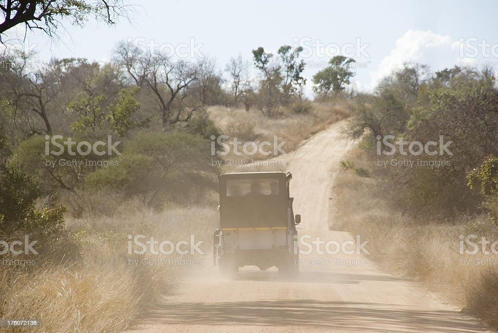 Game Drive (Wildlife Safari) royalty-free stock photo