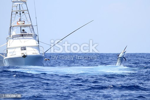 A big marlin jumps near a charter fishing game boat near Cairns.