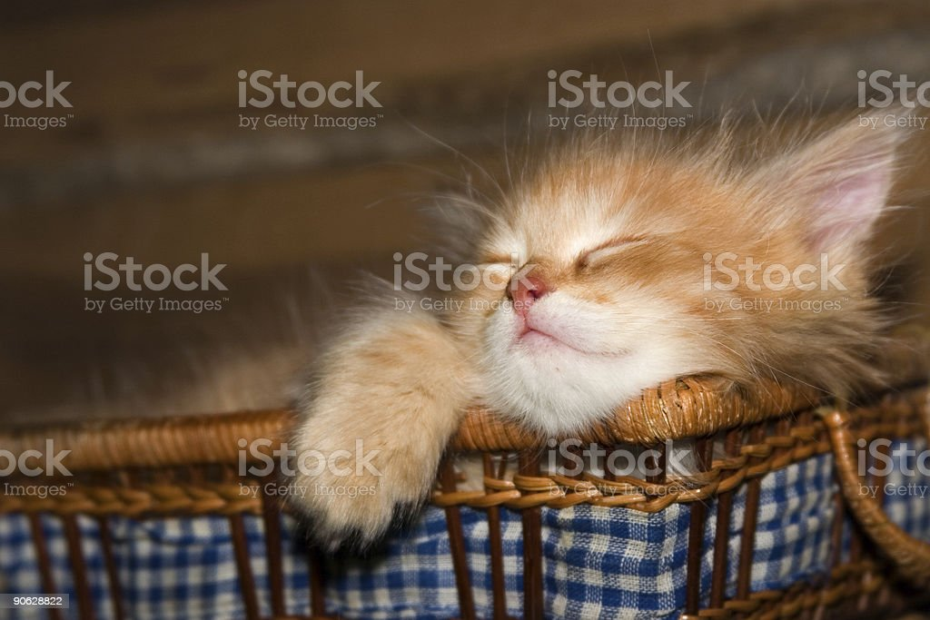 Game over royalty-free stock photo