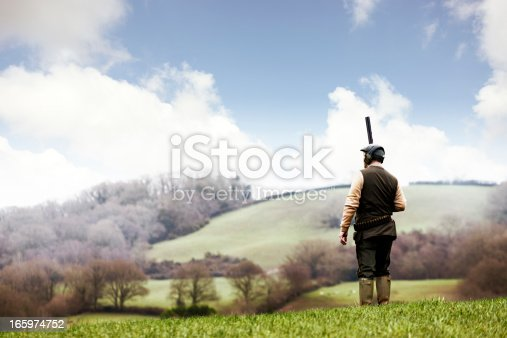 A man, dressed in country clothing and holding his shotgun, waits for a pheasant.,  Devon, UK