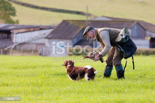 A Gamekeeper praising his Springer Spaniel, Devon, UK