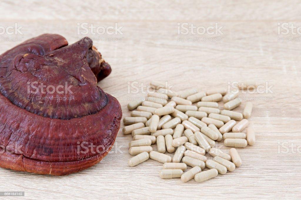 Ganoderma lucidum capsule - Ling zhi mushroom stock photo
