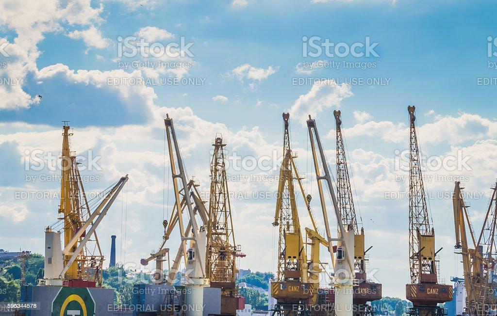 Gantry cargo cranes in the port royalty-free stock photo