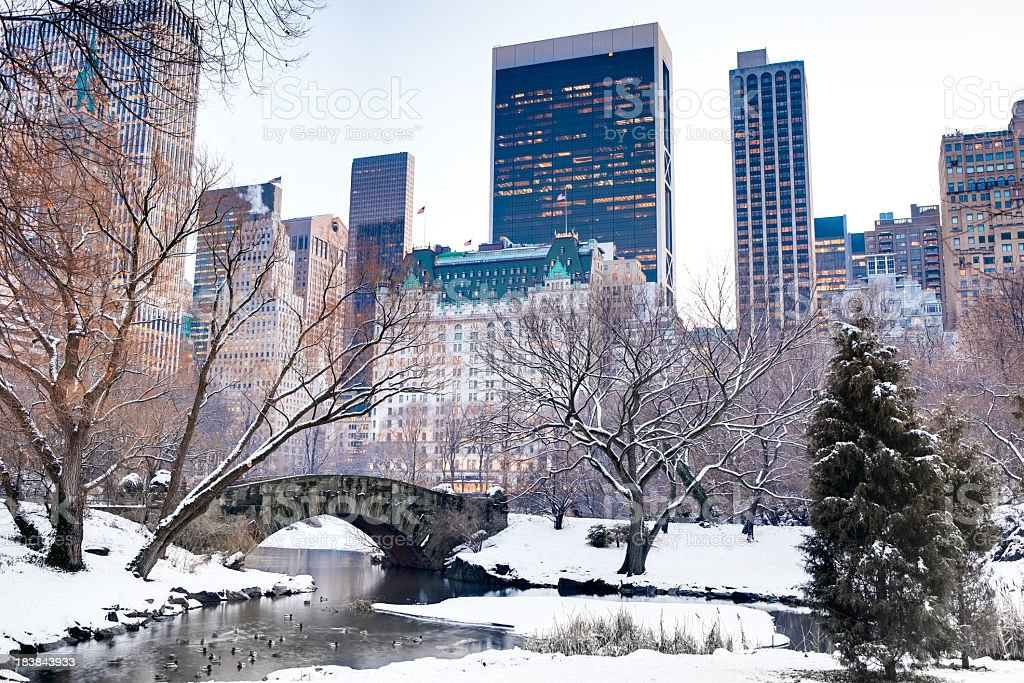 Gapstow Bridge in Central Park during winter royalty-free stock photo